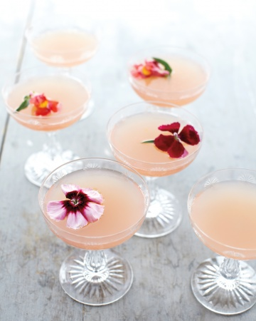 Spring Cocktails from Martha Stewart